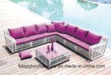 Mobilia di vimini del giardino del sofà esterno dell'hotel (TG-JW02)
