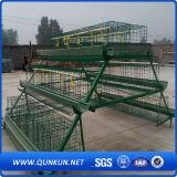 Kooi van de Laag van de Kip van het Landbouwbedrijf van het Gevogelte van Oeganda de Automatische
