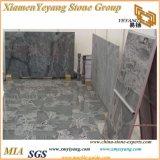 Granito del azul de cielo de China, escaleras del granito, suelos del granito, losas del granito, azulejos del granito, piedras
