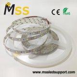 Cool-White SMD 2835 TIRA DE LEDS con IP65 Resistente al agua