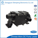 12V 24V de Mini Hoge Pomp van de Waterkoeling van de Lift Voor CNC Apparatuur