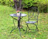2013 de nieuwste Uitstekende Antieke Smeedijzers tuinieren de Decoratieve BinnenReeks van de Lijst van het Metaal