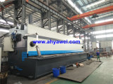 이탈리아 Esa S510 3D CNC Guillotinas Hidraulicas