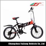China Bicicleta Eléctrica con Pantalla LCD