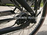 a bicicleta da entrega de 2 rodas 250With350With500W/bicicleta da carga ou a bicicleta elétrica da caixa para a bicicleta da família/duas rodas para dois Kids/2 a roda Bakfiets/bebê carreg a bicicleta Removeable lateral