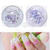 Las uñas de acrílico decoración Nail Art polvo de purpurina hojuelas