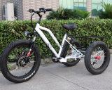 Bateria de lítio com pequena carga elétrica de triciclo