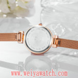 Montre-bracelet occasionnelle de dames de quartz de courroie en cuir de marque de mode (Wy-17021)