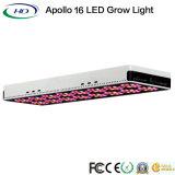아폴로 16 LED는 Hydroponic 시스템 성장을%s 가볍게 증가한다