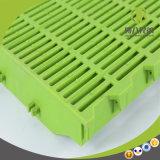 Haltbares Ferkel-Plastikfußboden mit in werfendem Rahmen Nusery Rahmen
