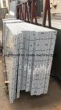 Comitato di alluminio a resina epossidica di memoria di favo di Sanwich di trattamento di superficie