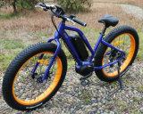 Cer-MITTLERER Laufwerk-elektrischer Fahrrad-Schmutz-elektrisches Fahrrad