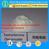 Magerer Muskel, der hochwertiges Testosteron Decanoate Steroid Puder 5721-91-5 aufbaut