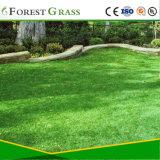 ペット子供の友好的で美しく自然な見る人工的な草(CS)