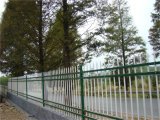 Acier résidentiel simple blanc de jardin clôturant 18-3