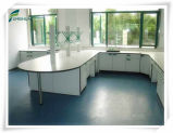 Panneau en stratifié résistant chimique pour la partie supérieure du comptoir de laboratoire d'école