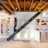 Designs de escadaria moderna escadaria em madeira com Corrimão de vidro