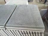 Mattonelle di pavimento grigio-chiaro del granito della Cina G633 Padang