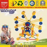 Brinquedo plástico de Eductional do Sell 2017 quente