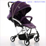 Luxury& Form-Aluminiumlegierung-Baby-Spaziergänger für 3 in 1