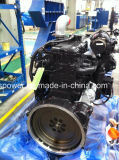 Motore diesel brandnew di Cummins Qsl8.9-C260 per il macchinario di costruzione