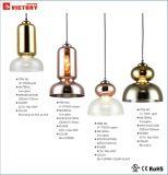 상업적인 단 하나 샹들리에 실내를 위한 현대 점화 펀던트 램프