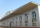 Proyecto de la estructura de acero ligera y de la estructura de acero de hoja de acero