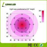 300W 600W 900W 1000W LED 1200 W crescer Chips de dupla luz Series Full Spectrum Crescer Lâmpada para plantas e flores de Veg