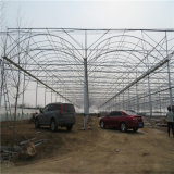 Professional To manufacture Offer Multispan Plastic Agricultural Film Greenhouse Greenhous Film