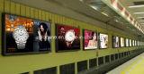 2017 Vendas quente fábrica chinesa melhor as vendas 1,52*30m Pet para impressão Eco-Sovent Filme retroiluminado