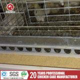 Heißes BAD galvanisierter Huhn-Rahmen