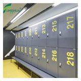 De in het groot Kasten van de Opslag van de Gymnastiek van het Slot RFID Groene