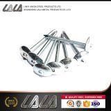 Bwg9*2,5 parapluie galvanisé tête de clou de toiture prix d'usine