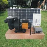 SWIMMINGPOOL-Pumpe des Gleichstrom-schwanzlose Motor1hp Solarmit 3 Jahren Garantie-