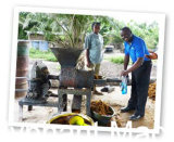 Давление пальмового масла