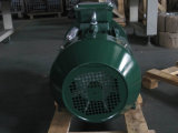 GOST標準三相AC電動機200kw 270HP (315M-2)
