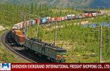 Профессиональные Китая железнодорожного транспорта в Ташкенте
