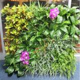 Parete falsa sintetica artificiale della pianta verde per la decorazione