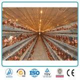 상업적인 농가 디자인 강철 구조물 보일러 층 닭장 또는 헛간