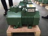 De Eenheid van de compressor/van de Compressor van het KoelSysteem