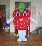 Hi fr71 Costume de la mascotte de fruits