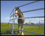 Cerca de aço do estilo elegante para o cavalo