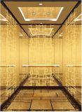 Лифт пассажира подъема высотки селитебный домашний (RLS-227)