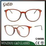 Optische Frame van uitstekende kwaliteit van het Oogglas Ultem het Plastic Eyewear met Slank Roestvrij staal B7054