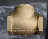 1/2 Klep van de Controle van het Messing van duim-4 Duim Horizontale (yard-3009)