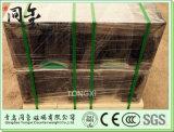 bilancia di Salter 250kg/550lbs per il peso del ghisa