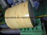 Pre покрашенный гальванизированный стальной цветок Coated PPGI катушки для строительного материала