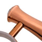 De aan de muur bevestigde Houder van de Borstel van het Toilet in Geplateerd nam Gouden &#160 toe; (BaQaZ3005-Gr-RG)