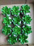 Migliori piante artificiali di vendita di Gu20170305113541 succulente