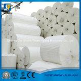 Chaîne de production faciale de fabrication de papier de serviette de tissu de toilette au Nigéria